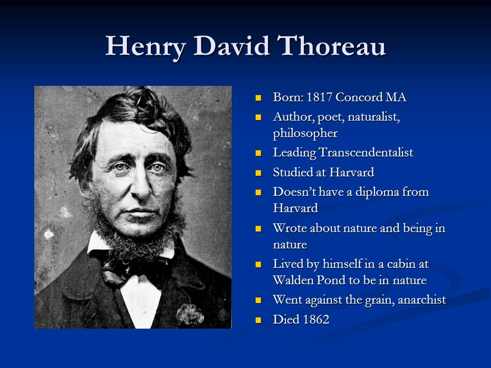 Henry David Thoreau Born: 1817 Concord MA Author, poet, naturalist, philosopher Leading Transcendentalist Studied at Harvard Doesn't have a diploma fr