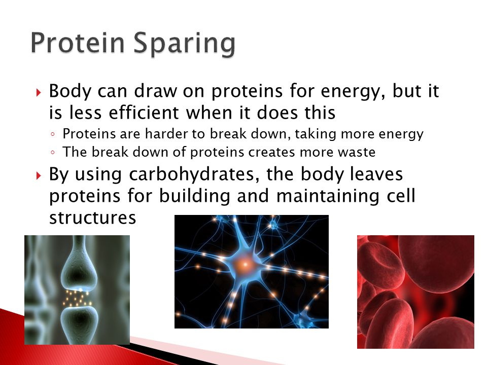  Body can draw on proteins for energy, but it is less efficient when it does this ◦ Proteins are harder to break down, taking more energy ◦ The break down of proteins creates more waste  By using carbohydrates, the body leaves proteins for building and maintaining cell structures