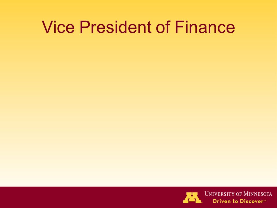 Vice President of Finance