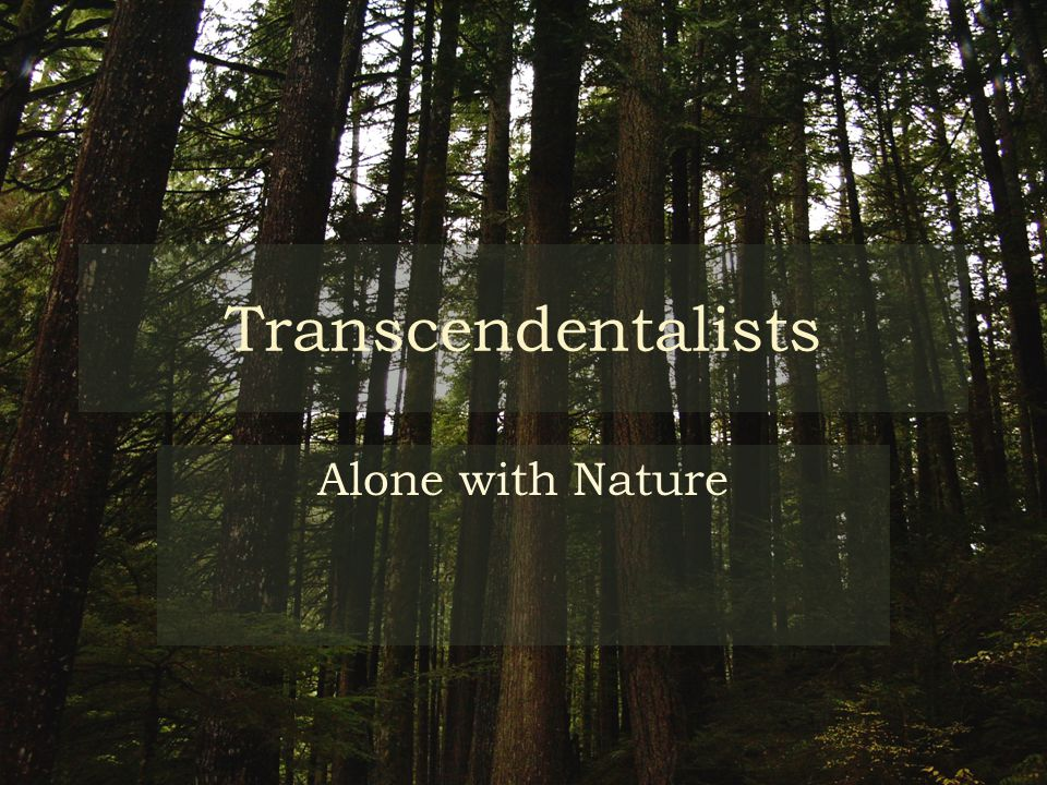 Transcendentalists Alone with Nature