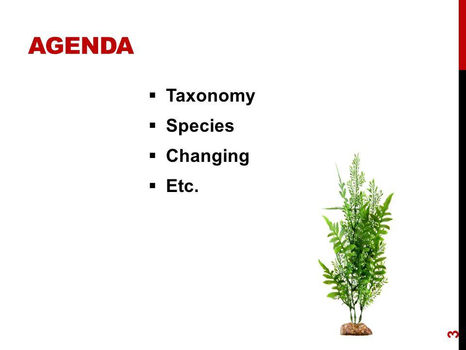 AGENDA  Taxonomy  Species  Changing  Etc. 3