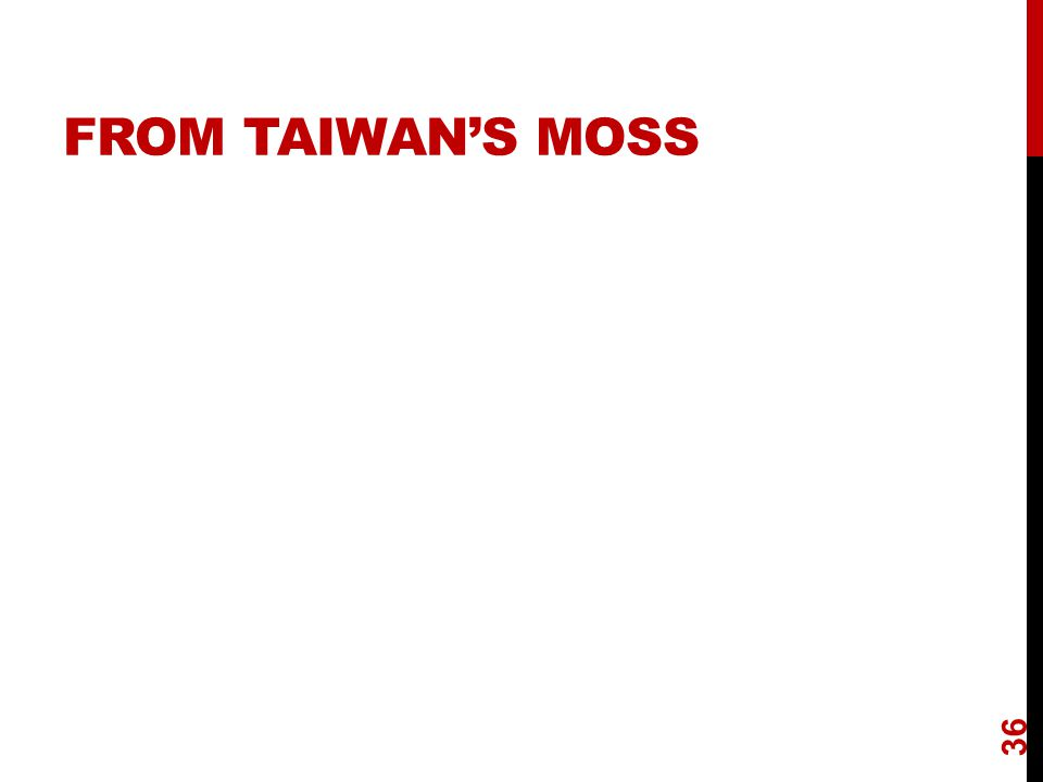 FROM TAIWAN'S MOSS 36