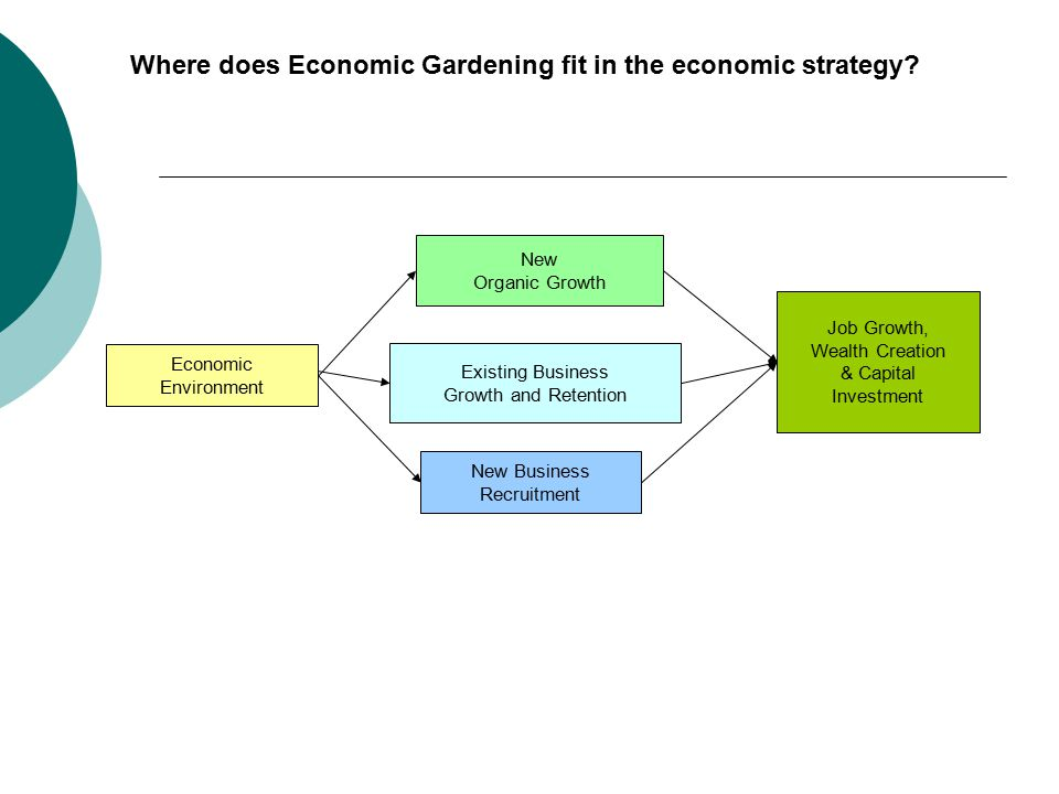 Economic Environment New Organic Growth Where does Economic Gardening fit in the economic strategy.