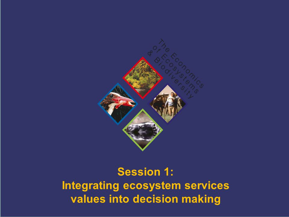 TEEB Training Session 1: Integrating ecosystem services values into decision making