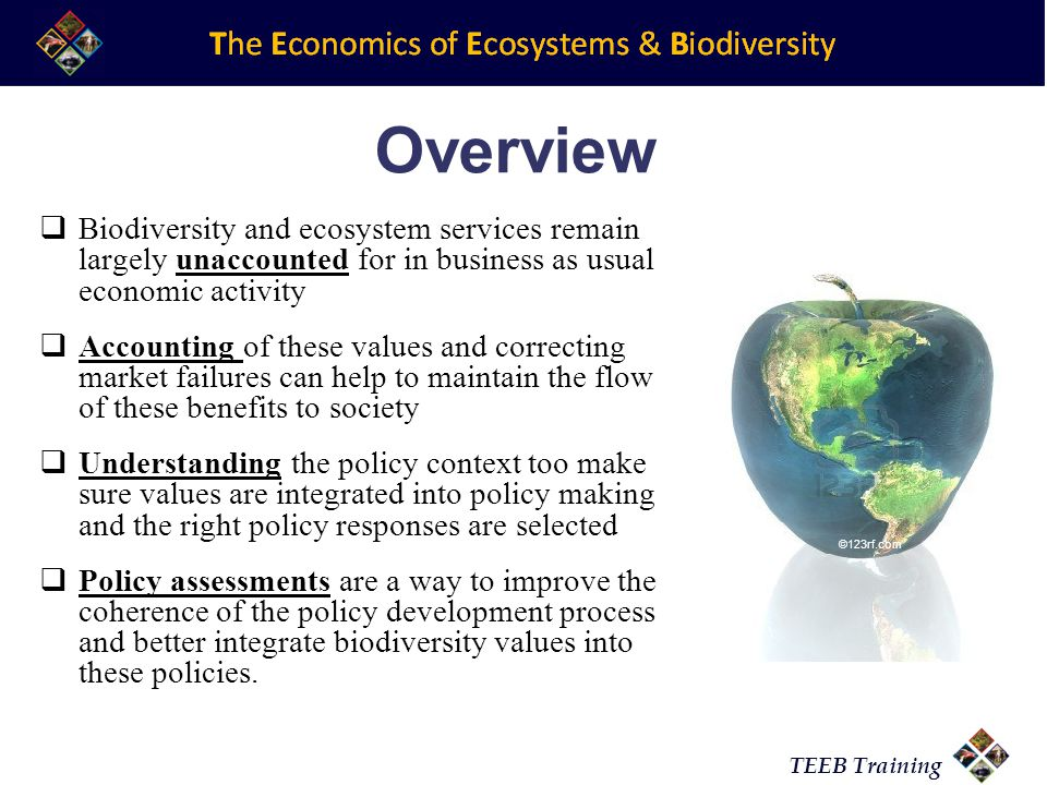 TEEB Training Overview  Biodiversity and ecosystem services remain largely unaccounted for in business as usual economic activity  Accounting of these values and correcting market failures can help to maintain the flow of these benefits to society  Understanding the policy context too make sure values are integrated into policy making and the right policy responses are selected  Policy assessments are a way to improve the coherence of the policy development process and better integrate biodiversity values into these policies.