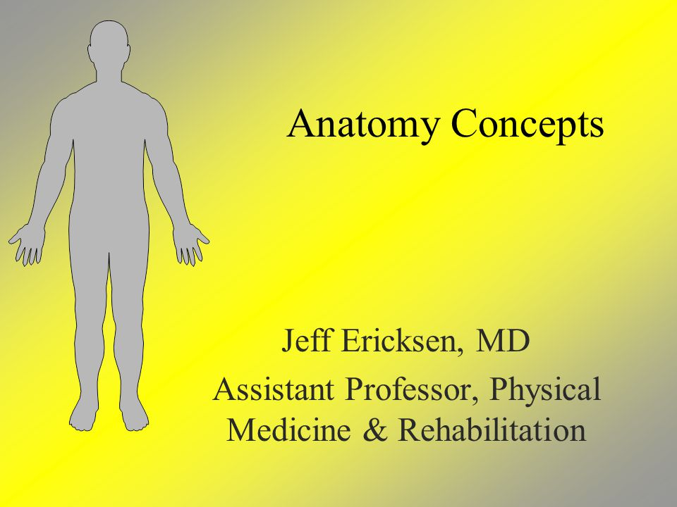 Anatomy Concepts Jeff Ericksen, MD Assistant Professor, Physical Medicine & Rehabilitation