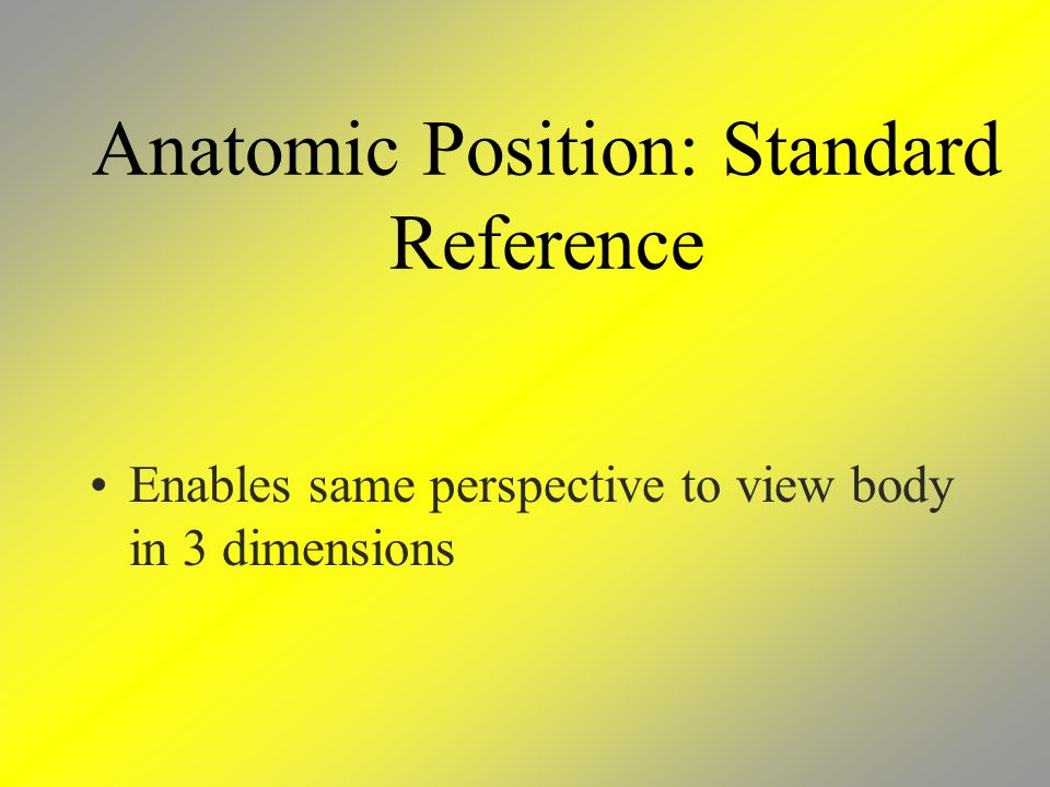 Anatomic Position: Standard Reference Enables same perspective to view body in 3 dimensions