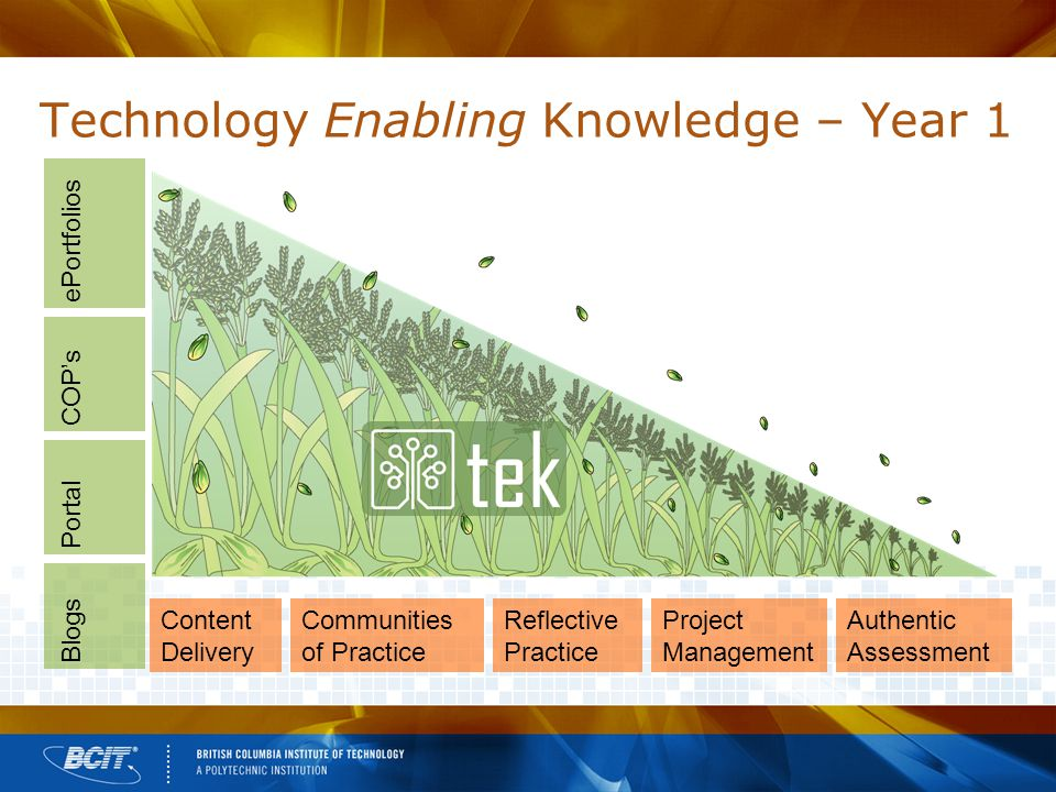 Technology Enabling Knowledge – Year 1 Content Delivery Communities of Practice Reflective Practice Project Management Authentic Assessment Blogs Portal COP's ePortfolios