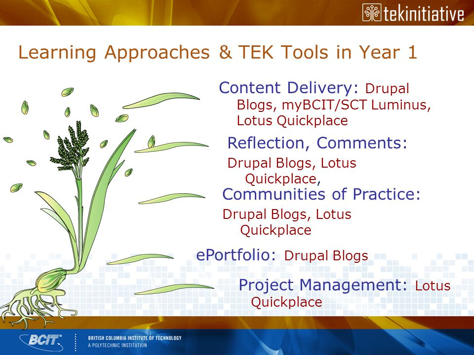Learning Approaches & TEK Tools in Year 1 Content Delivery: Drupal Blogs, myBCIT/SCT Luminus, Lotus Quickplace Reflection, Comments: Drupal Blogs, Lotus Quickplace, Communities of Practice: Drupal Blogs, Lotus Quickplace ePortfolio: Drupal Blogs Project Management: Lotus Quickplace