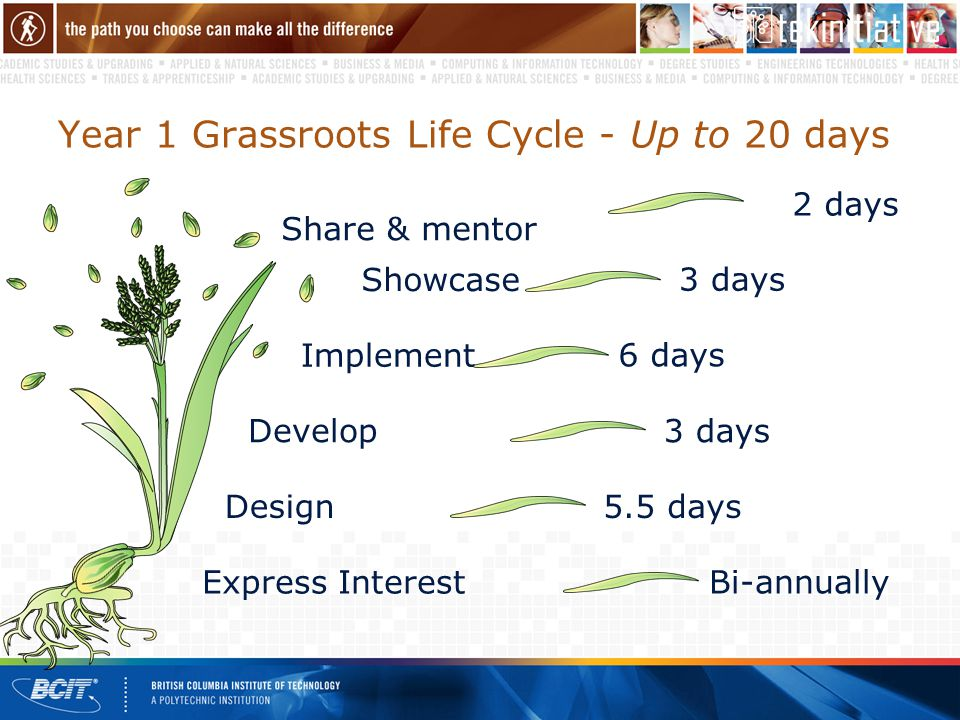 Year 1 Grassroots Life Cycle - Up to 20 days Share & mentor 2 days Showcase 3 days Implement 6 days Develop3 days Design5.5 days Express Interest Bi-annually