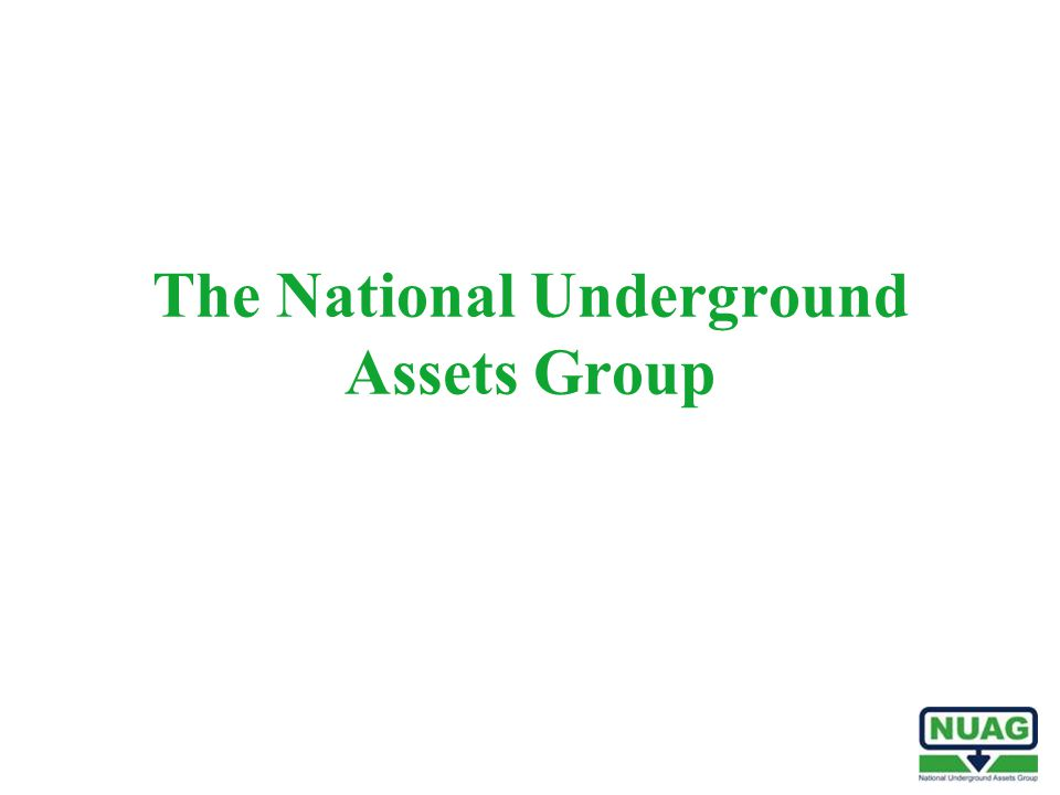 The National Underground Assets Group