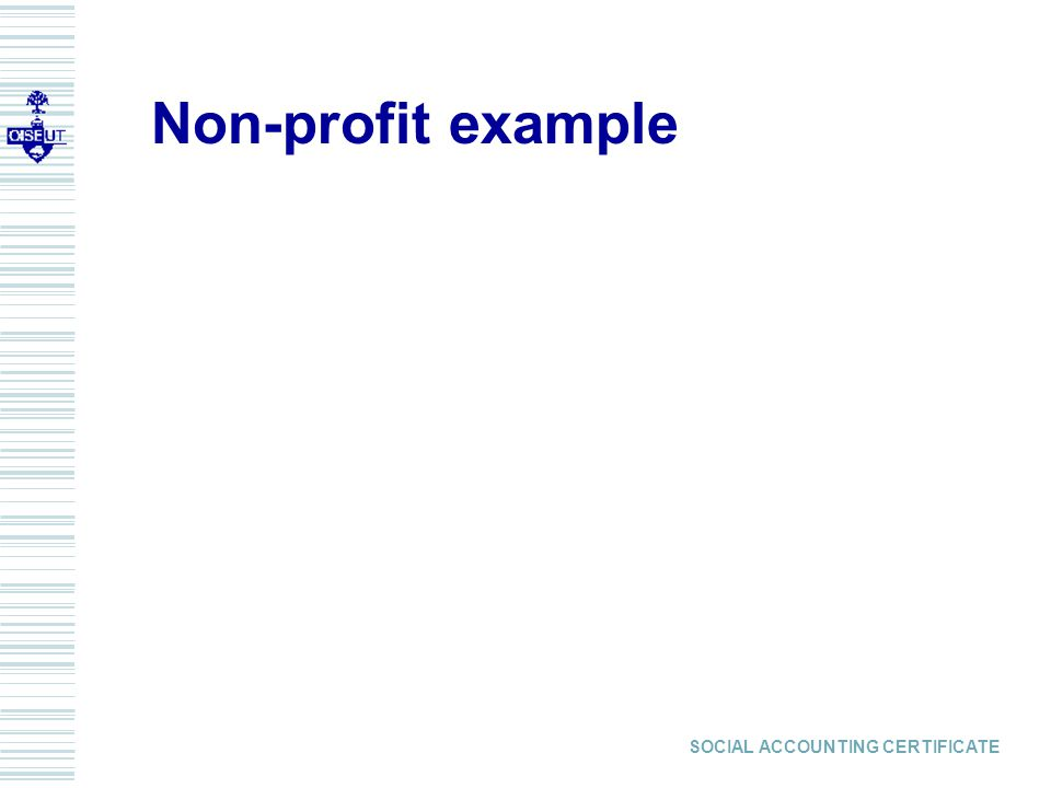 SOCIAL ACCOUNTING CERTIFICATE Non-profit example
