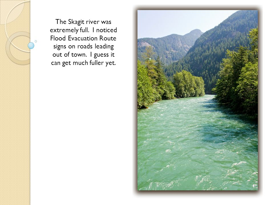 The Skagit river was extremely full.