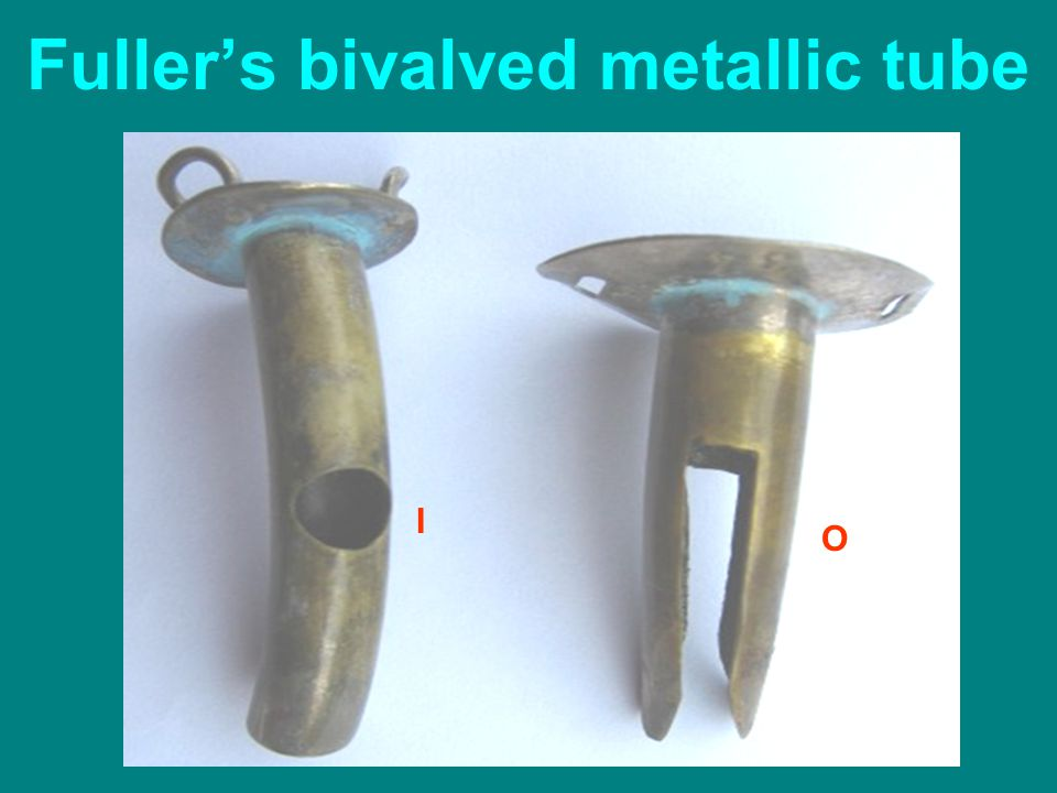 Fuller's bivalved metallic tube I O
