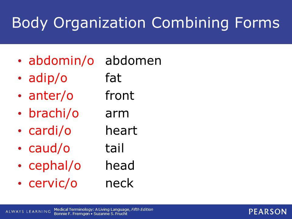 Medical Terminology: A Living Language, Fifth Edition Bonnie F. Fremgen Suzanne S. Frucht Body Organization Combining Forms abdomin/oabdomen adip/ofat
