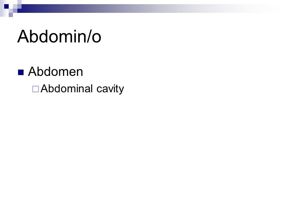 Abdomin/o Abdomen  Abdominal cavity