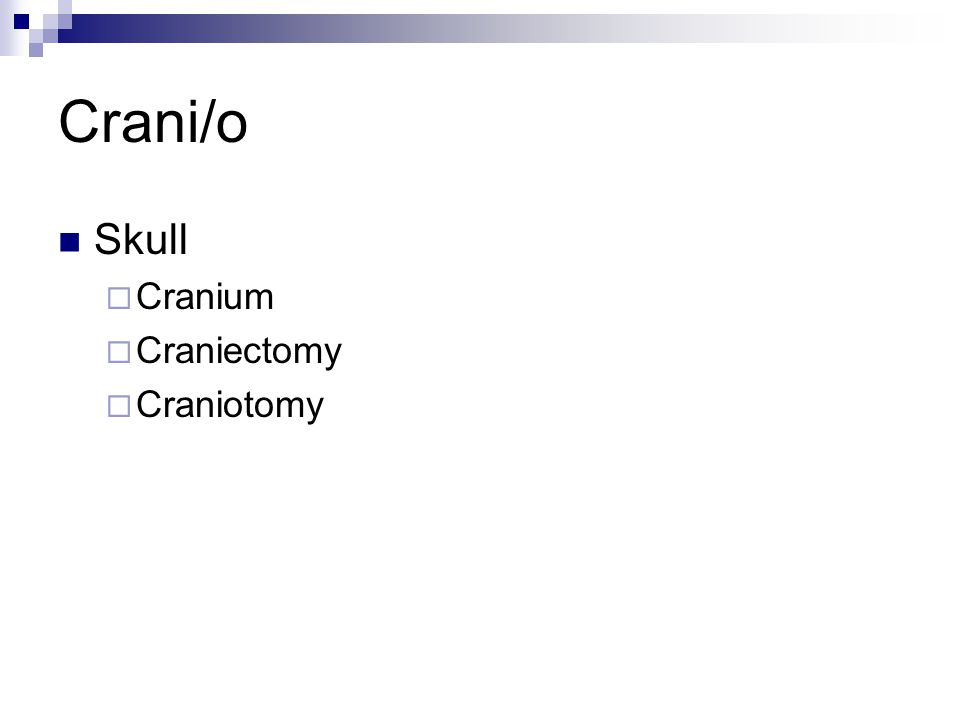 Crani/o Skull  Cranium  Craniectomy  Craniotomy