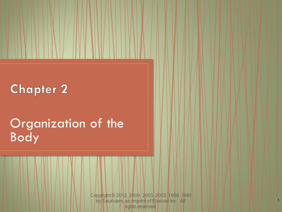Copyright © 2012, 2009, 2005, 2003, 1999, 1991 by Saunders, an imprint of Elsevier Inc. All rights reserved. 1 Organization of the Body