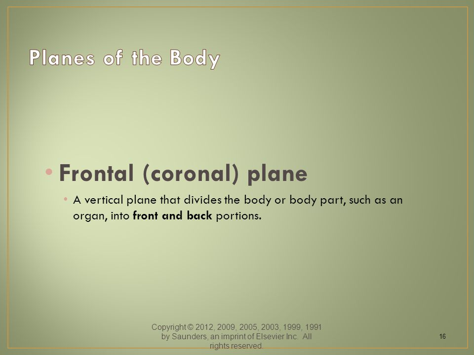 Frontal (coronal) plane A vertical plane that divides the body or body part, such as an organ, into front and back portions. Copyright © 2012, 2009, 2