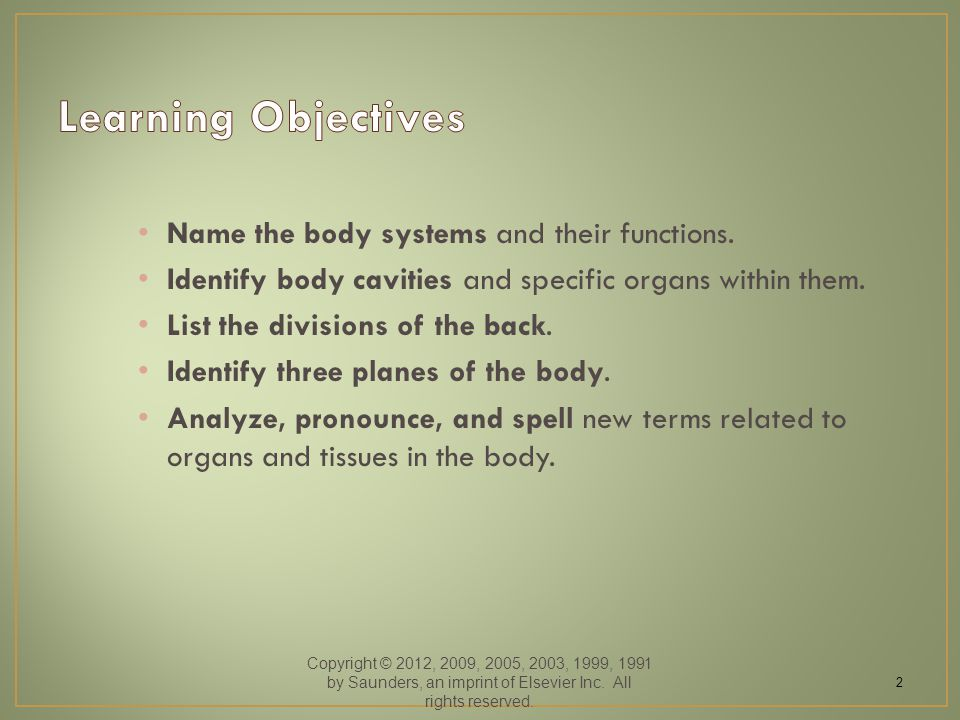 Name the body systems and their functions. Identify body cavities and specific organs within them. List the divisions of the back. Identify three plan