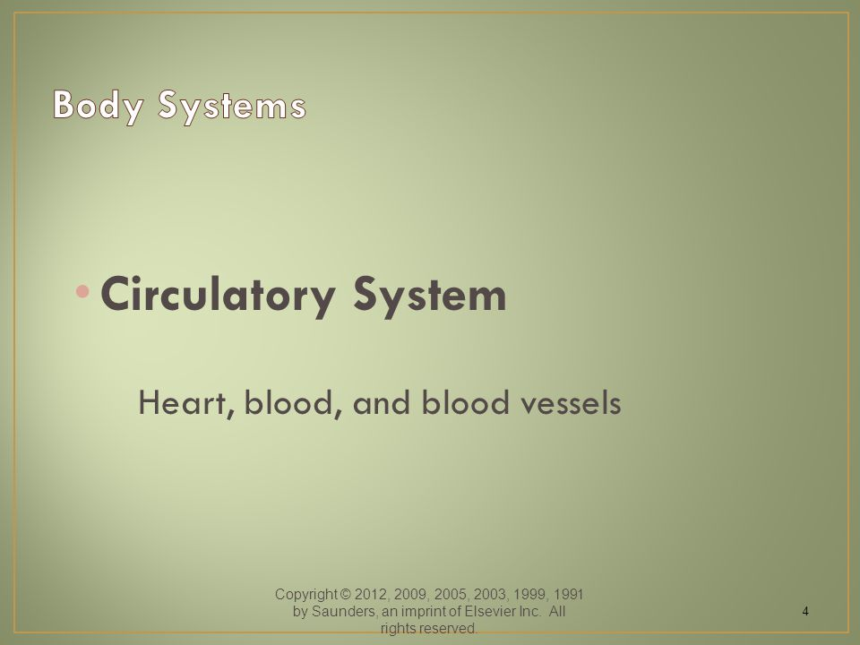 Circulatory System Heart, blood, and blood vessels Copyright © 2012, 2009, 2005, 2003, 1999, 1991 by Saunders, an imprint of Elsevier Inc.
