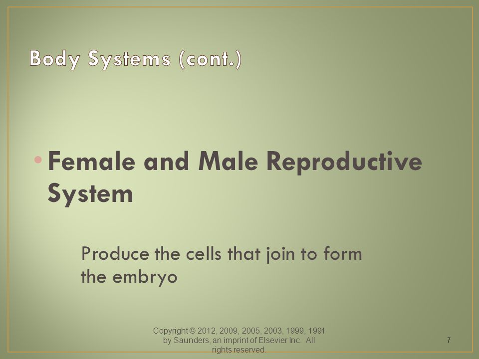 Female and Male Reproductive System Produce the cells that join to form the embryo Copyright © 2012, 2009, 2005, 2003, 1999, 1991 by Saunders, an impr