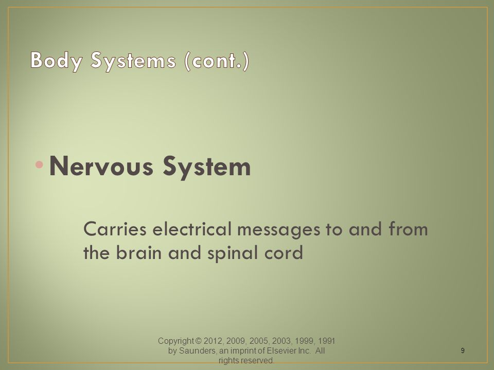 Nervous System Carries electrical messages to and from the brain and spinal cord Copyright © 2012, 2009, 2005, 2003, 1999, 1991 by Saunders, an imprint of Elsevier Inc.