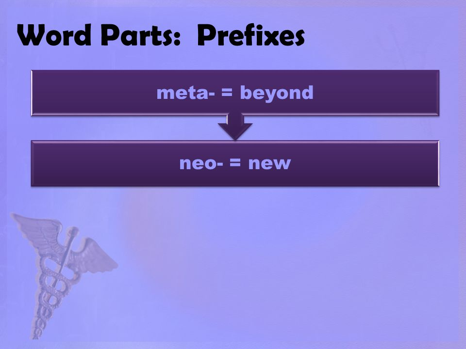 Word Parts: Prefixes neo- = new meta- = beyond
