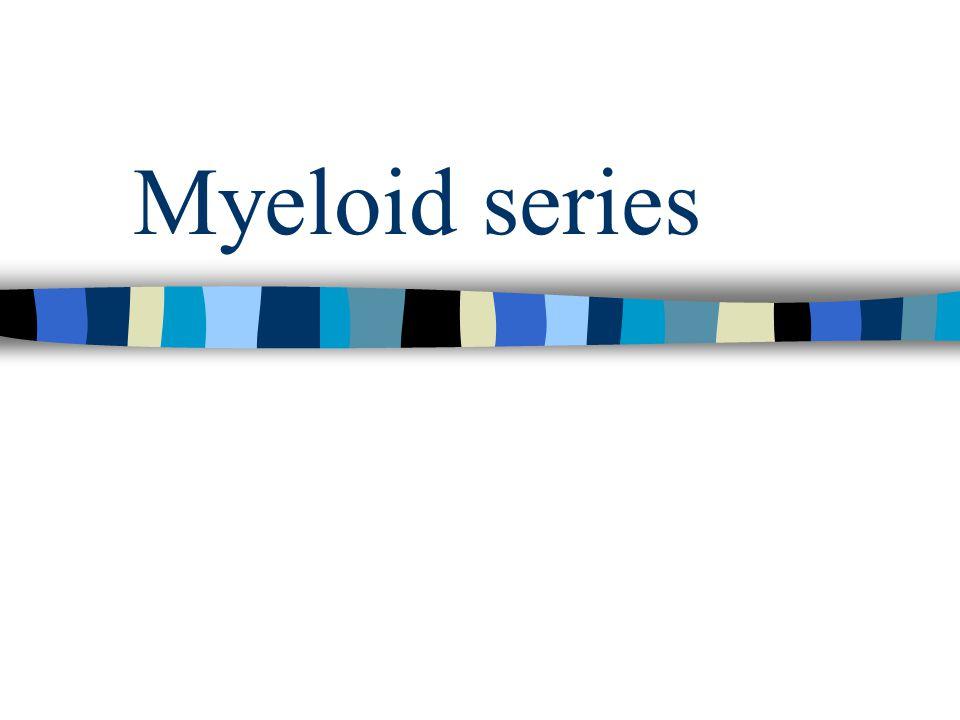 Myeloid series