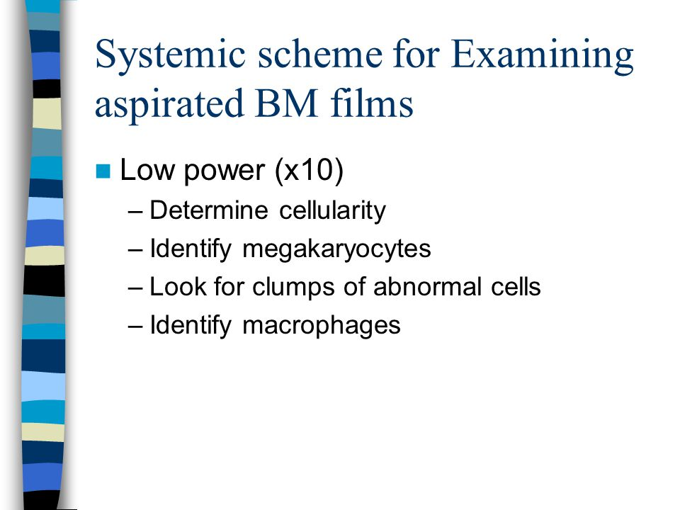Systemic scheme for Examining aspirated BM films Higher power (x40, x100) –Identify all stages of maturation of myeloid and erythroid cells.
