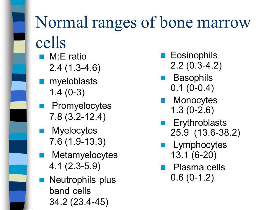 Normal ranges of bone marrow cells M:E ratio 2.4 (1.3-4.6) myeloblasts 1.4 (0-3) Promyelocytes 7.8 (3.2-12.4) Myelocytes 7.6 (1.9-13.3) Metamyelocytes
