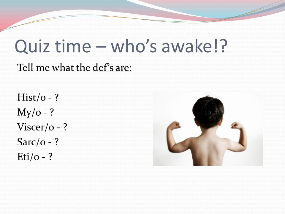 Quiz time – who's awake!. Tell me what the def's are: Hist/o - .