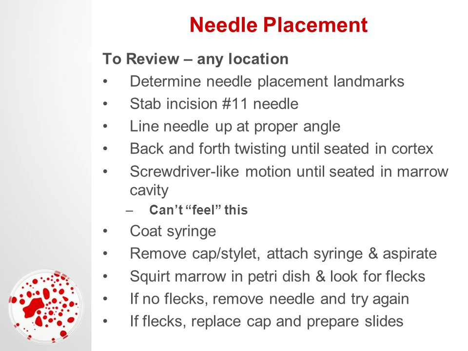 Needle Placement To Review – any location Determine needle placement landmarks Stab incision #11 needle Line needle up at proper angle Back and forth twisting until seated in cortex Screwdriver-like motion until seated in marrow cavity –Can't feel this Coat syringe Remove cap/stylet, attach syringe & aspirate Squirt marrow in petri dish & look for flecks If no flecks, remove needle and try again If flecks, replace cap and prepare slides