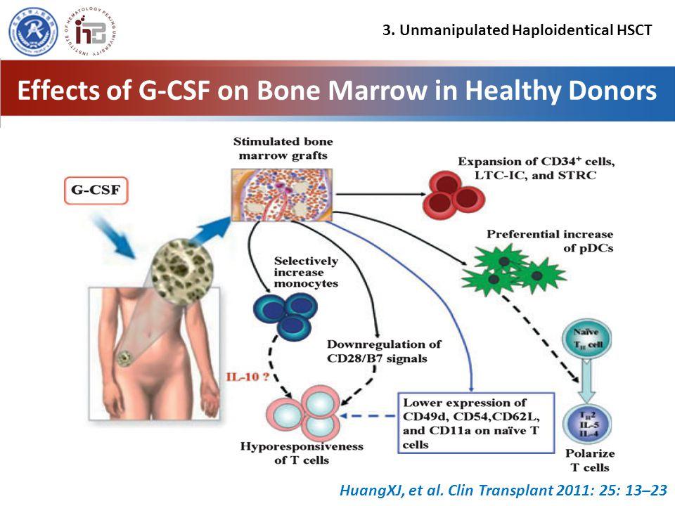Effects of G-CSF on Bone Marrow in Healthy Donors HuangXJ, et al.
