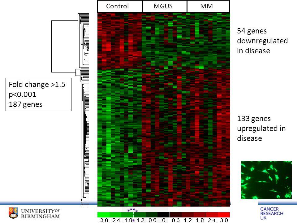 Fold change >1.5 p<0.001 187 genes ControlMGUSMM 54 genes downregulated in disease 133 genes upregulated in disease