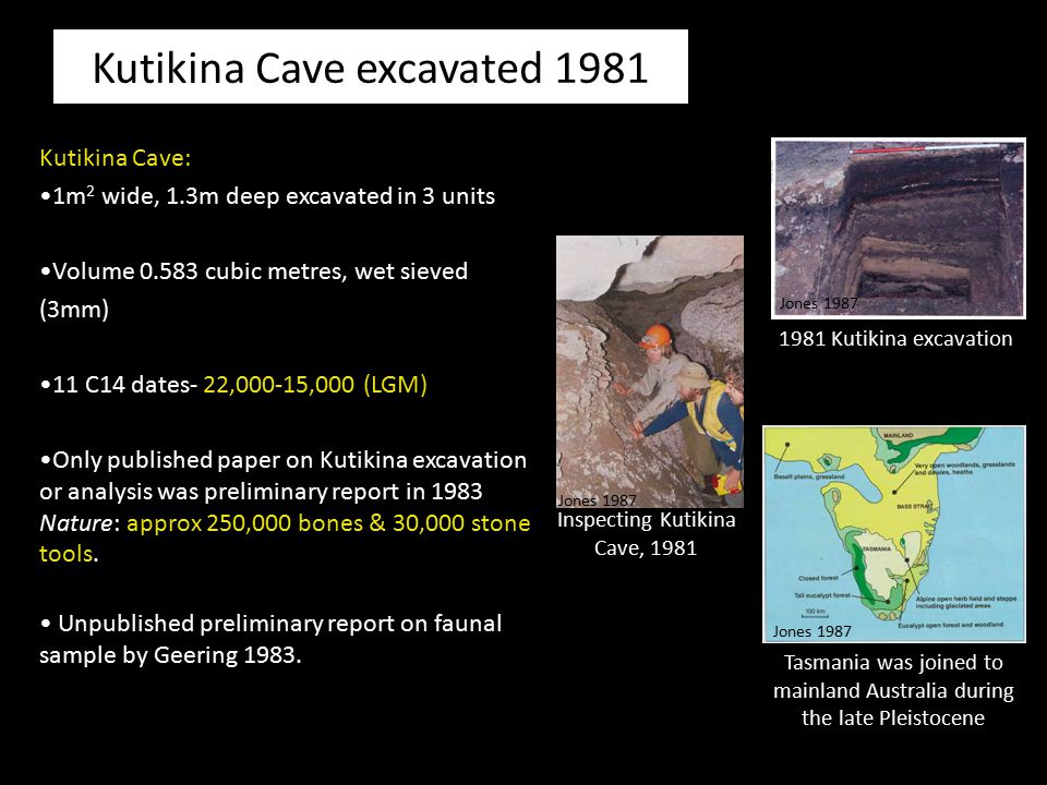 Kutikina Cave excavated 1981 Kutikina Cave: 1m 2 wide, 1.3m deep excavated in 3 units Volume 0.583 cubic metres, wet sieved (3mm) 11 C14 dates- 22,000
