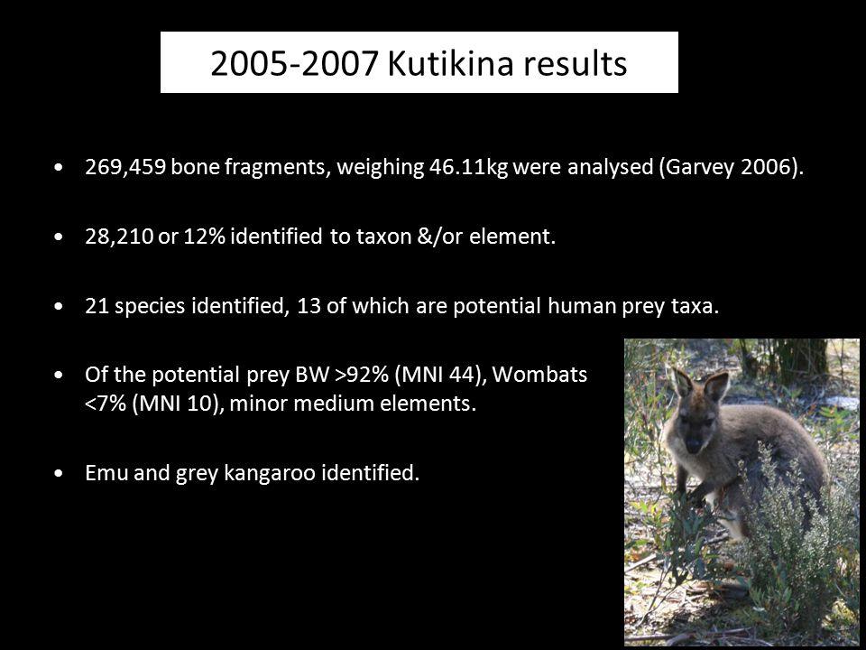 Kutikina Cave Bennett's wallaby ( >75%) Wombat (7%) kangaroo & emu small mammals medium mammals bones relatively complete = owls -humans.