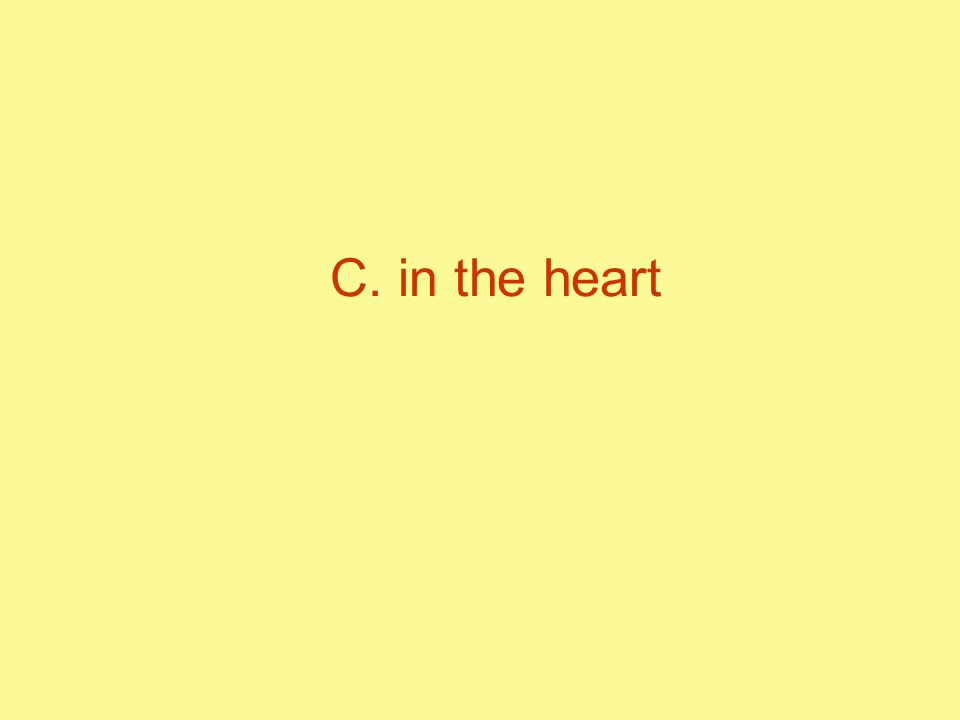 C. in the heart