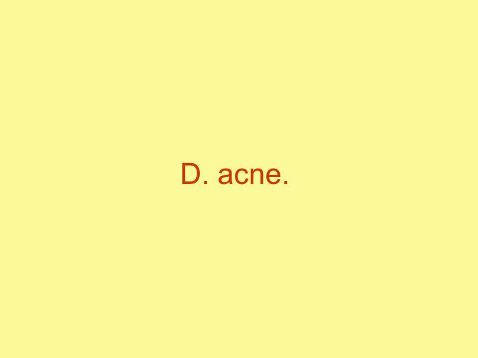 D. acne.