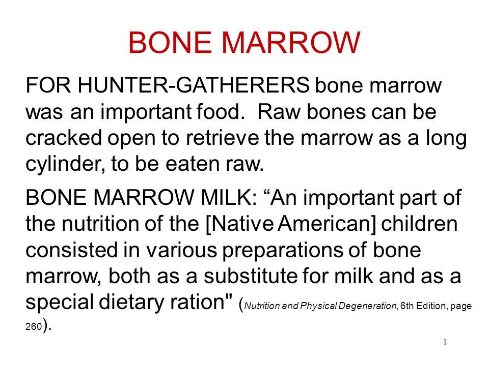 BONE MARROW 1 FOR HUNTER-GATHERERS bone marrow was an important food.
