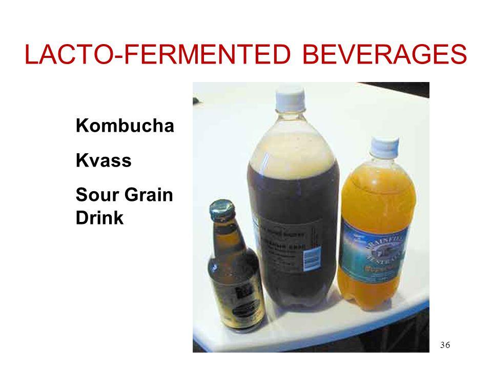 LACTO-FERMENTED BEVERAGES Kombucha Kvass Sour Grain Drink 36