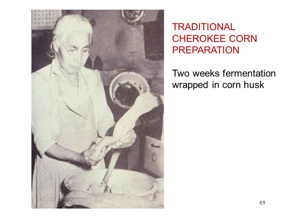 TRADITIONAL CHEROKEE CORN PREPARATION Two weeks fermentation wrapped in corn husk 65