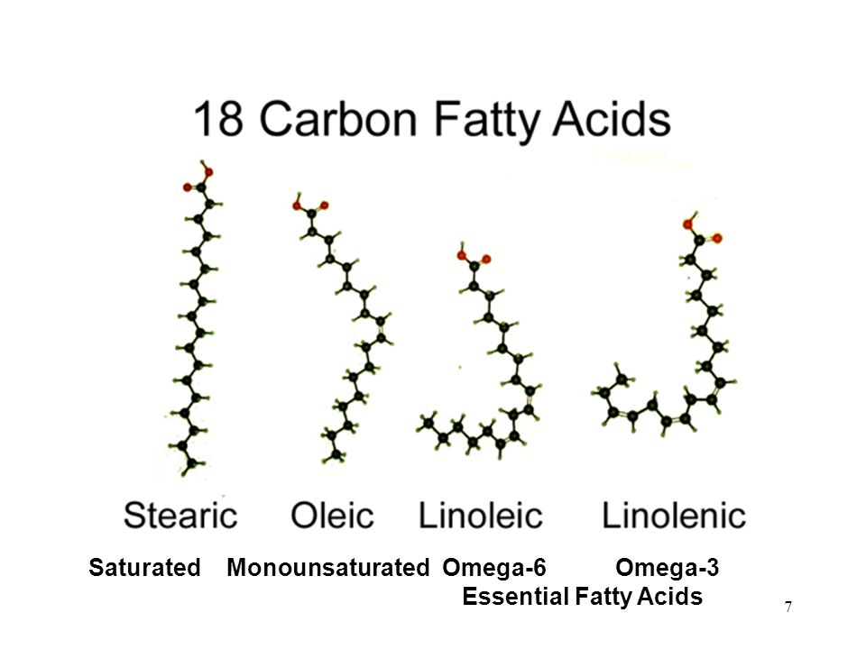 18-Carbon Fatty Acids Omega-6Omega-3 Essential Fatty Acids Saturated Monounsaturated 7