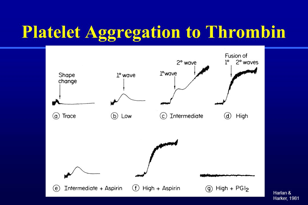 Platelet Aggregation to Thrombin Harlan & Harker, 1981