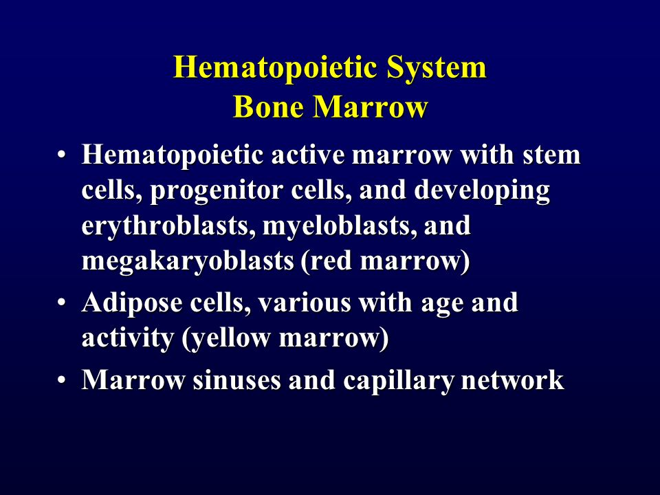 Slide ASCP Bone Marrow 3:ASCP Bone Marrow 3: Histology 6.2: Trabecular bone with hematopoietic tissue and fatHistology 6.2: Trabecular bone with hematopoietic tissue and fat Rodak 7 Bone Marrow with hematopoietic tissue, capillaries, and fatRodak 7 Bone Marrow with hematopoietic tissue, capillaries, and fat Rodak #76 Core Biopsy shows 50 % fat and 50 % hematopoietic tissue Rodak #76 Core Biopsy shows 50 % fat and 50 % hematopoietic tissue