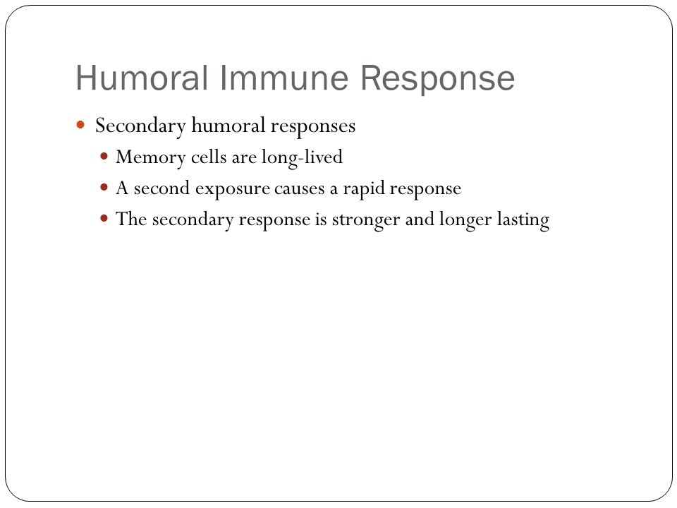Humoral Immune Response Secondary humoral responses Memory cells are long-lived A second exposure causes a rapid response The secondary response is stronger and longer lasting