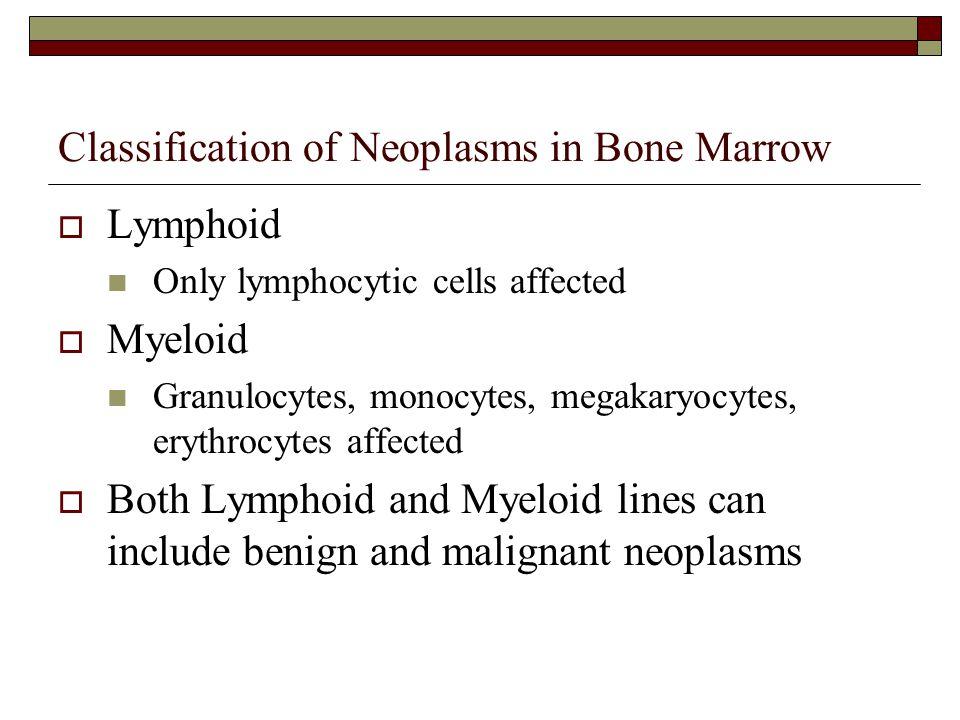Classification of Neoplasms in Bone Marrow  Lymphoid Only lymphocytic cells affected  Myeloid Granulocytes, monocytes, megakaryocytes, erythrocytes