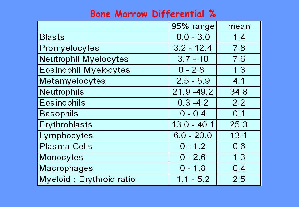 Bone Marrow Differential %