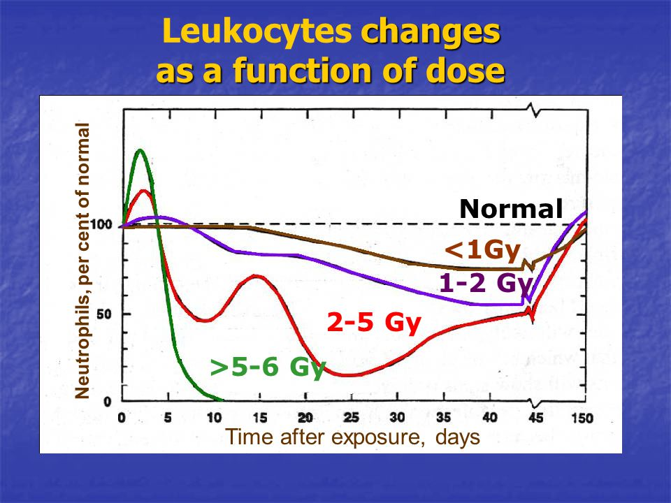 changes as a function of dose Leukocytes changes as a function of dose Normal <1Gy 1-2 Gy 2-5 Gy >5-6 Gy Neutrophils, per cent of normal Time after ex