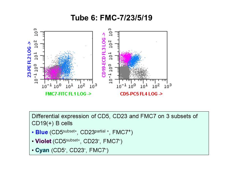 Tube 6: FMC-7/23/5/19